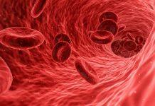 Νέα ασφαλής και αποτελεσματική θεραπεία για τη μεσογειακή αναιμία