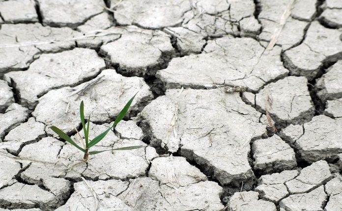 Παγκόσμια Τράπεζα: Ευάλωτα τα Δυτικά Βαλκάνια στην κλιματική αλλαγή
