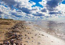 Νησιά Γκαλαπάγκος: Συνέλεξαν 22 τόνους σκουπιδιών από τις ακτές