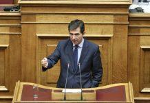 Κ.Γκιουλέκας: Δεν υπάρχει θέμα συνεκμετάλλευσης