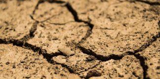 Η κλιματική αλλαγή ψαλιδίζει κατά 30% την παραγωγή λαχανικών
