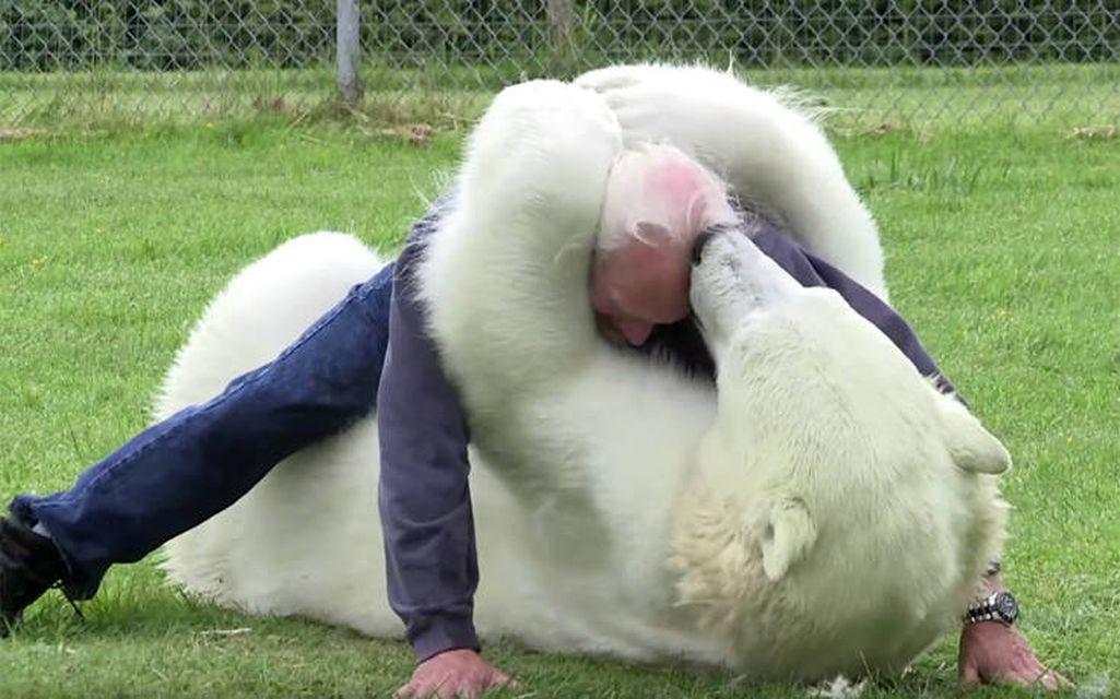 Έχουν ως κατοικίδιο μια πολική αρκούδα!