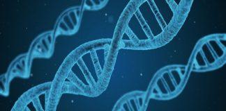 Σύνδεση μεταξύ βλάβης του DNA και εμφάνισης καρκίνου φέρνει νέα έρευνα