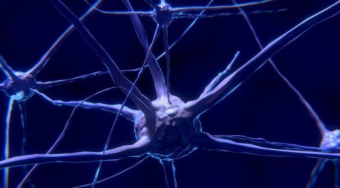Νέες ελπίδες για την πολλαπλή σκλήρυνση δίνει η μεταμόσχευση βλαστοκυττάρων