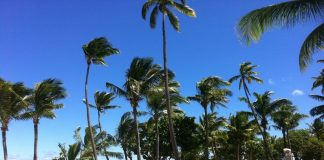 Η κλιματική αλλαγή διαλύει τα νησιά Φίτζι