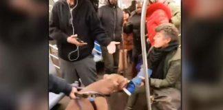Σκύλος επιτέθηκε σε επιβάτιδα του μετρό