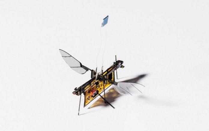 Robofly: Η πρώτη ρομποτική μύγα άνοιξε τα φτερά της! (vd)