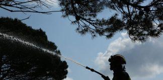 Ημαθία: Ένας νεκρός από πυρκαγιά σε δασική έκταση