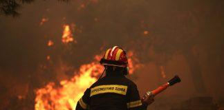 Υψηλός κίνδυνος φωτιάς σήμερα στη Χαλκιδική