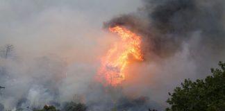 Μάχη με τις φλόγες δίνουν οι πυροσβέστες στη Μάνη