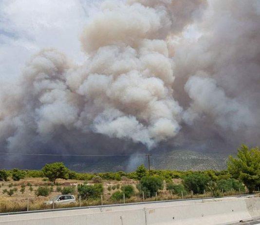 Σε εξέλιξη πυρκαγιά πάνω από την Κινέτα (pics&vd)