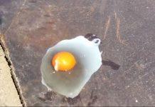 Ιαπωνία: Τηγανίζουν αυγά στο δρόμο ελέω... καύσωνα! (vd)