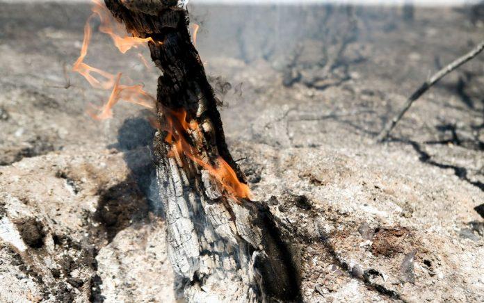 Υψηλός κίνδυνος πυρκαγιάς την Τρίτη στη Χαλκιδική