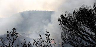 Υπό μερικό έλεγχο η πυρκαγιά στο Νεράκι - Politik.gr