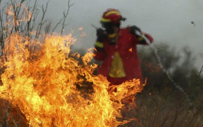 Ηλεία: Μεγάλη πυρκαγιά ξέσπασε στο δάσος της Στροφυλίας