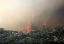 Υψηλός κίνδυνος πυρκαγιάς στη Χαλκιδική