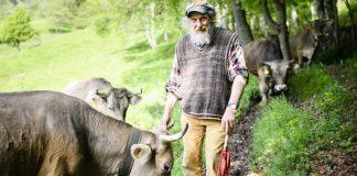Οι Ελβετοί είπαν «όχι» στις… «αγελάδες με κέρατα»