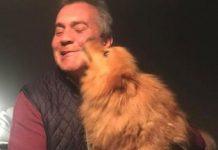 Σκυλίτσα που είχε κλαπεί πριν από ένα χρόνο, βρέθηκε 483 χλμ. μακριά!