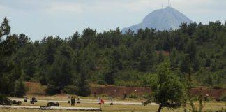 Λέσβος: Υπό έλεγχο η πυρκαγιά στο Καμένο Δάσος