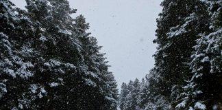 «Χτύπησε» χιονοστιβάδα τα Καλάβρυτα