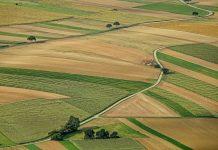ΗΠΑ: Δικαστήριο έκρινε το ζιζανιοκτόνο Roundup «ουσιαστικό παράγοντα» καρκίνου