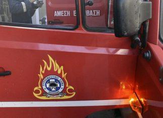 Λαμία: Πυροσβέστες έσωσαν σκύλο από πυρκαγιά