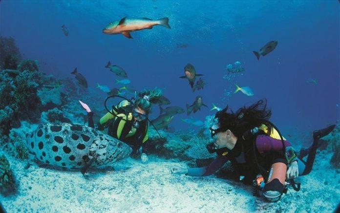 Τα κοράλλια μαρτυρούν «μυστικά» 400 ετών για το Ελ Νίνιο