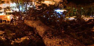Φονική κακοκαιρία στη Χαλκιδική με έξι νεκρούς