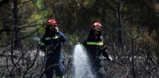 Πυρκαγιές σε Μέγαρα και Μαρκόπουλο