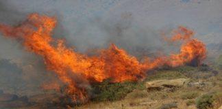 Ζάκυνθος: Εκτός ελέγχου η φωτιά - Εκκενώνονται χωριά