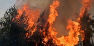 Λίβανος: Kύμα πυρκαγιών στη Συρία και στον Λίβανο