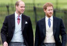 Ο πρίγκιπας Ουίλιαμ ανησυχεί για τον αδελφό του, Χάρι