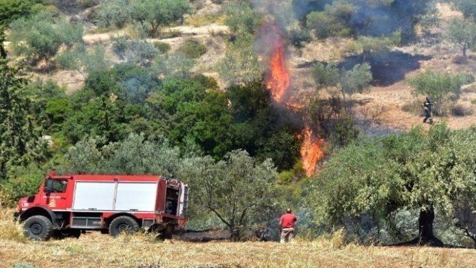 Υπό μερικό έλεγχο η πυρκαγιά στο Πόρτο Ράφτη
