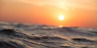 Λ.Σ.: Εμφανίστηκαν ποσότητες φυτοπλαγκτόν σε πολλές ακτές