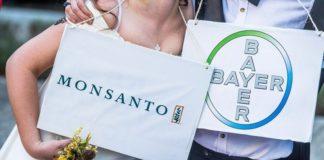 Η Monsanto παραδέχθηκε ότι χρησιμοποίησε ένα παράνομο ζιζανιοκτόνο στη Χαβάη
