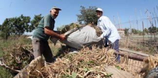 Οι δικαιούχοι του υπομέτρου «ανάπτυξης των μικρών γεωργικών εκμεταλλεύσεων»