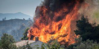 Πλημμύρες, πυρκαγιές και πανώλη - Η κλιματική αλλαγή αποτελεί αιτία για πολλά δεινά