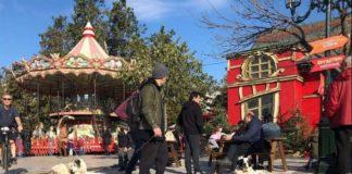Ενημέρωση από τον Δήμο Θεσσαλονίκης για τα αδέσποτα σκυλιά στο κέντρο της πόλης
