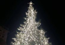 Εντείνει τους ελέγχους στην αγορά τροφίμων ο ΕΦΕΤ τα Χριστούγεννα