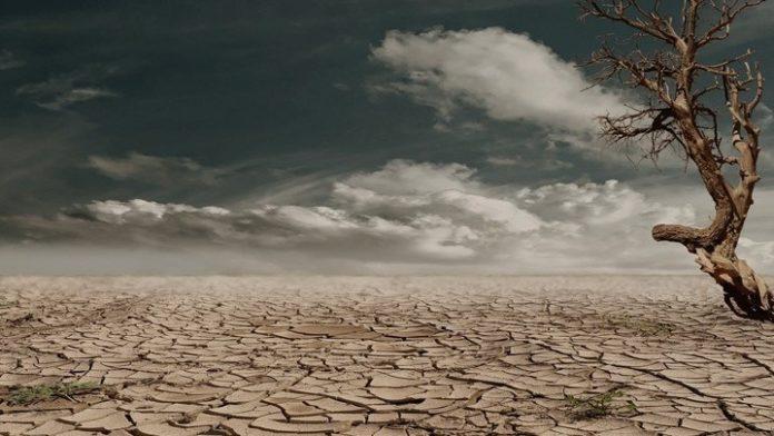 Ισπανία: Μεγάλη πορεία για την αντιμετώπιση της κλιματικής αλλαγής