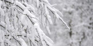 Κάτω από τους -10 βαθμούς έπεσαν οι θερμοκρασίες σε περιοχές της βόρειας Ελλάδας