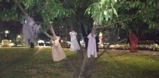 Μπουφάν κρεμασμένα στα δέντρα της Έδεσσας για να μη μείνει κανείς μόνος στους κρύους μήνες του χειμώνα!