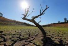 Ντιντιέ Κελόζ: Σώστε τη Γη γιατί είναι ο μοναδικός πλανήτης που έχουμε