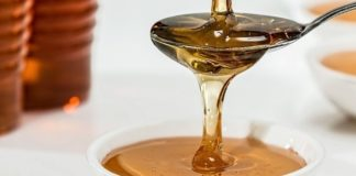 Σημαντικές οι προοπτικές για το μέλι και την βιομηχανική και φαρμακευτική κάνναβη, τονίστηκε στο 8ο Συνέδριο Αγροτεχνολογίας