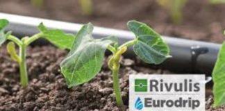 Συνεργασία της Rivulis-Eurodrip με την Jaffer Agro Services στο Πακιστάν