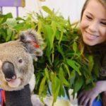 Βοήθησαν πάνω από 90.000 ζώα στην καιόμενη Αυστραλία