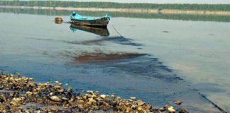 Απειλή για τη βιοποικιλότητα στον Δούναβη οι υδροηλεκτρικοί σταθμοί, σύμφωνα με έρευνα