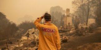 """Αυστραλία: Οι πυρκαγιές, ένα """"ολοκαύτωμα"""" για την πανίδα, προειδοποιούν οι ειδικοί"""