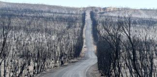 Έκταση όσο η Ιρλανδία έκαψαν έως τώρα οι πυρκαγιές στην Αυστραλία