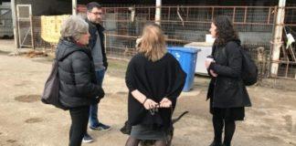 Η «Ανοιχτή Πόλη» καταγγέλλει τις συνθήκες στο Κέντρο φιλοξενίας αδέσποτων στο Βοτανικό
